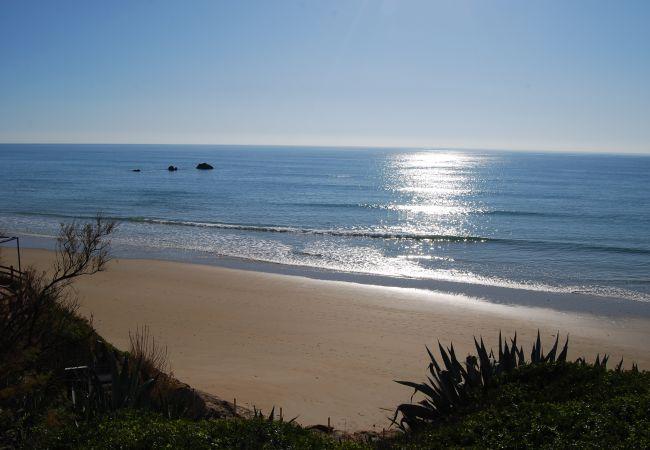 Vistas desde Villas Flamenco Beach del reflejo del sol en el mar y las tres rocas playa Fuente del Gallo